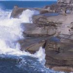 Waves from distant storms: a fatal combination for Australia's rock fishers