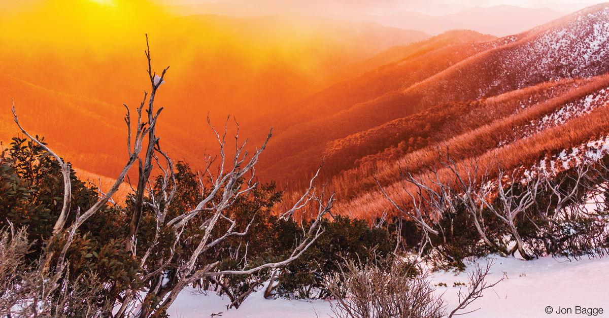 Bright orange and yellow fog from the sunset sky lies in a layer over the hills, with green and dead trees emerging from the snow.