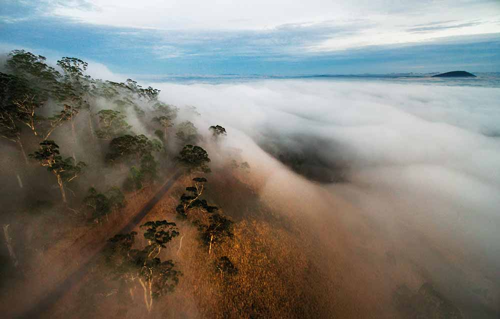 Fog blankets Mt Buninyong, Victoria, 21 January 2016—Andrew Thomas Photographer