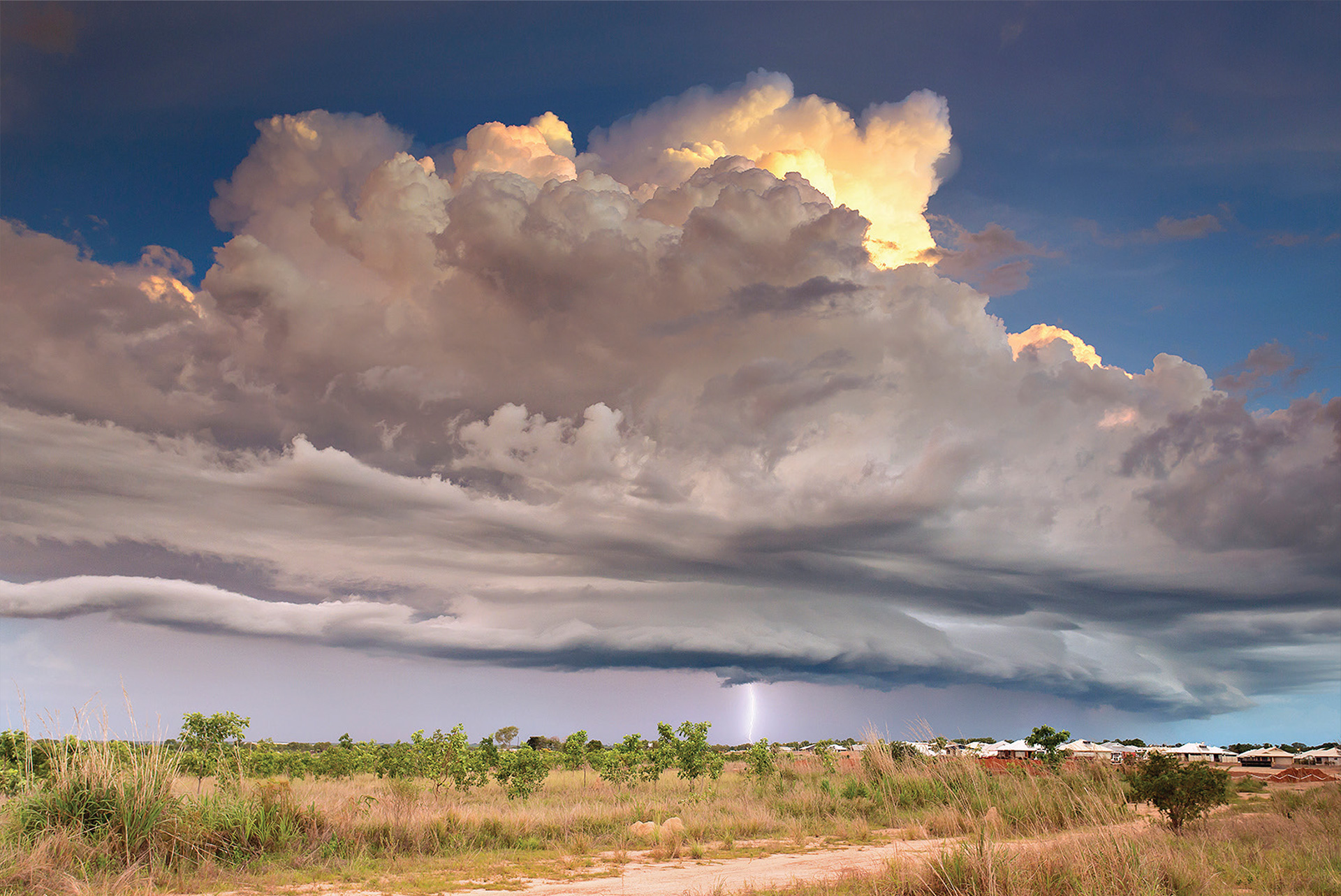 Large storm clouds in sky over grassy foreground, a lightning bolt coming from the cloud to the ground