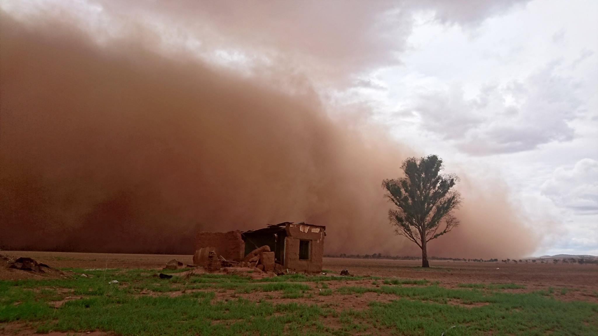 A dust storm rolls through near Freeling, South Australia, 17 March 2016. Credit: Craig Hese