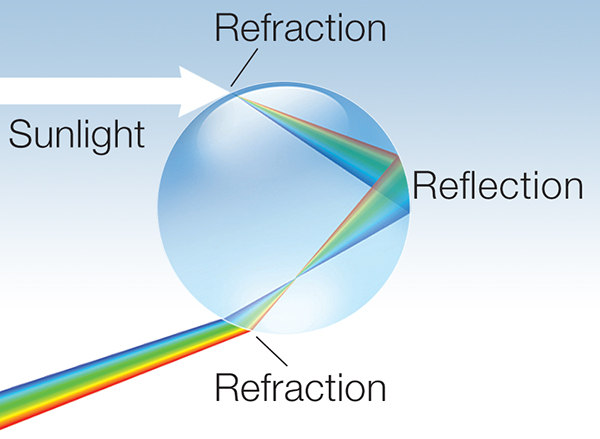 ray diagram showing how sunlight is refracted and reflected in a raindrop