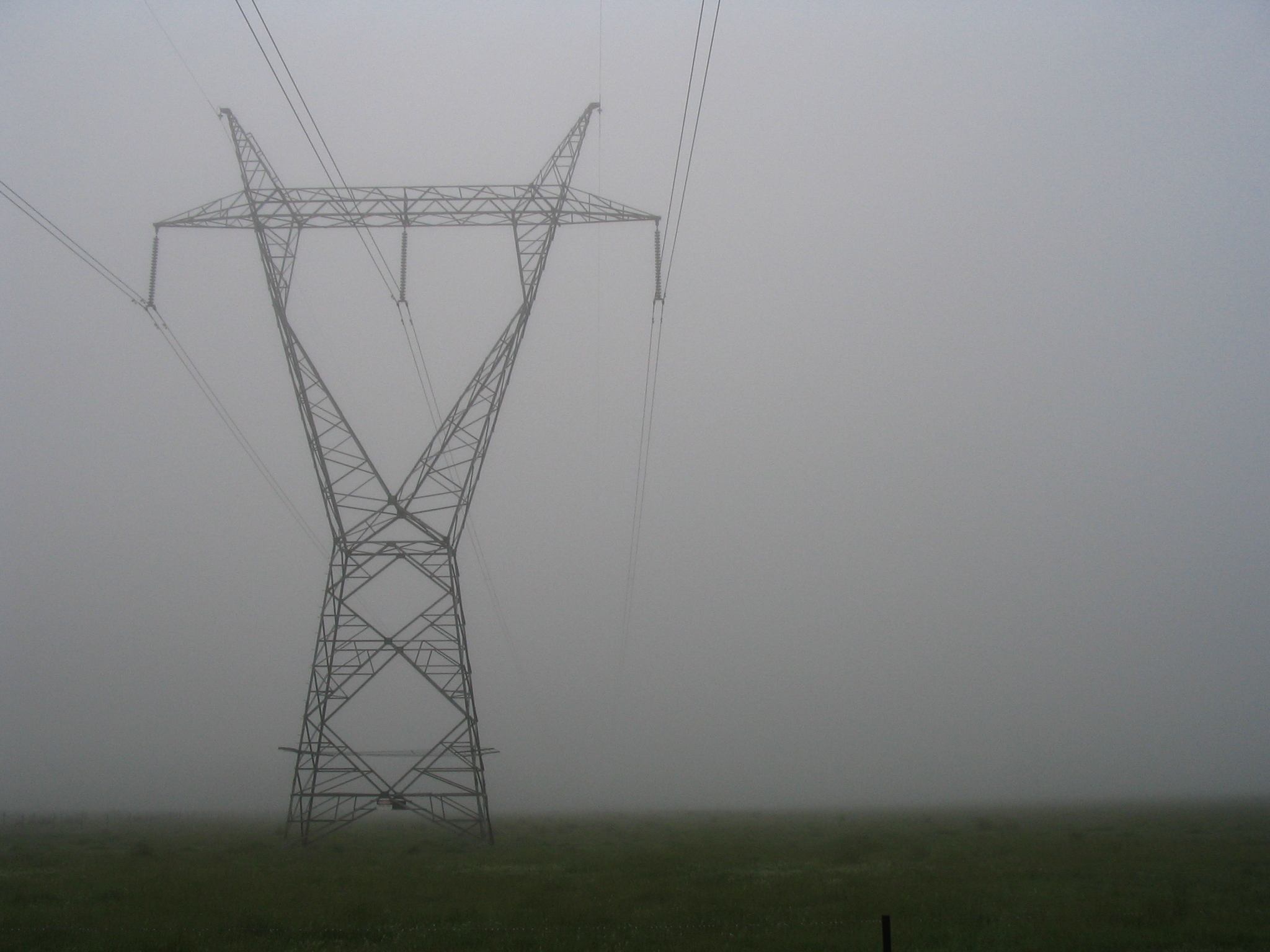 Power pylon in the fog, in a grassy paddock