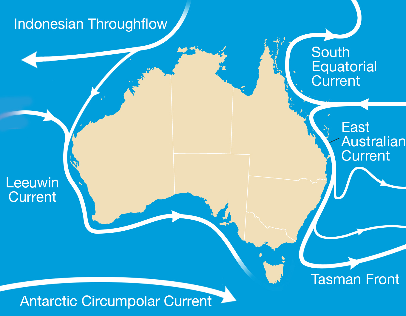 Map showing major ocean currents around Australia.