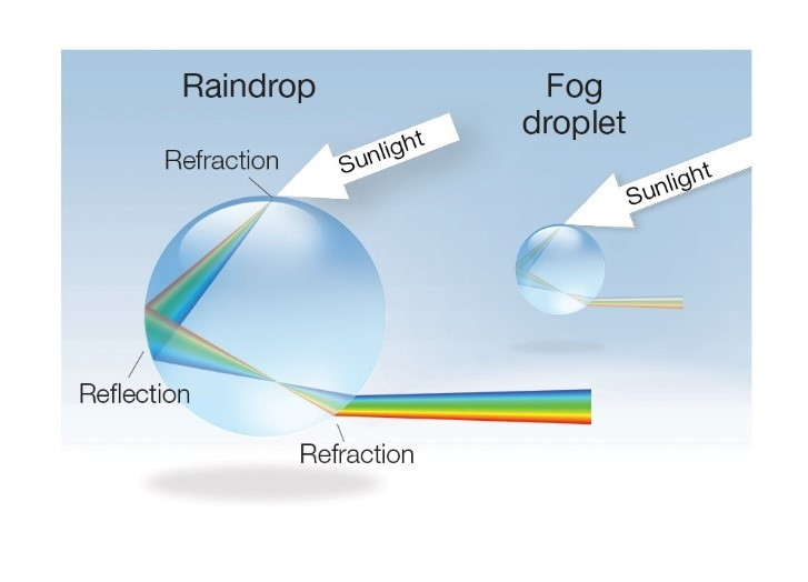 Light refracting and reflecting inside a larger raindrop and smaller fog drop to make a rainbow and fogbow (fainter and more white than coloured), respectively.