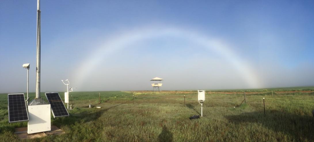 Fogbow at Cunderdin airstrip, Western Australia on 24 August 2018