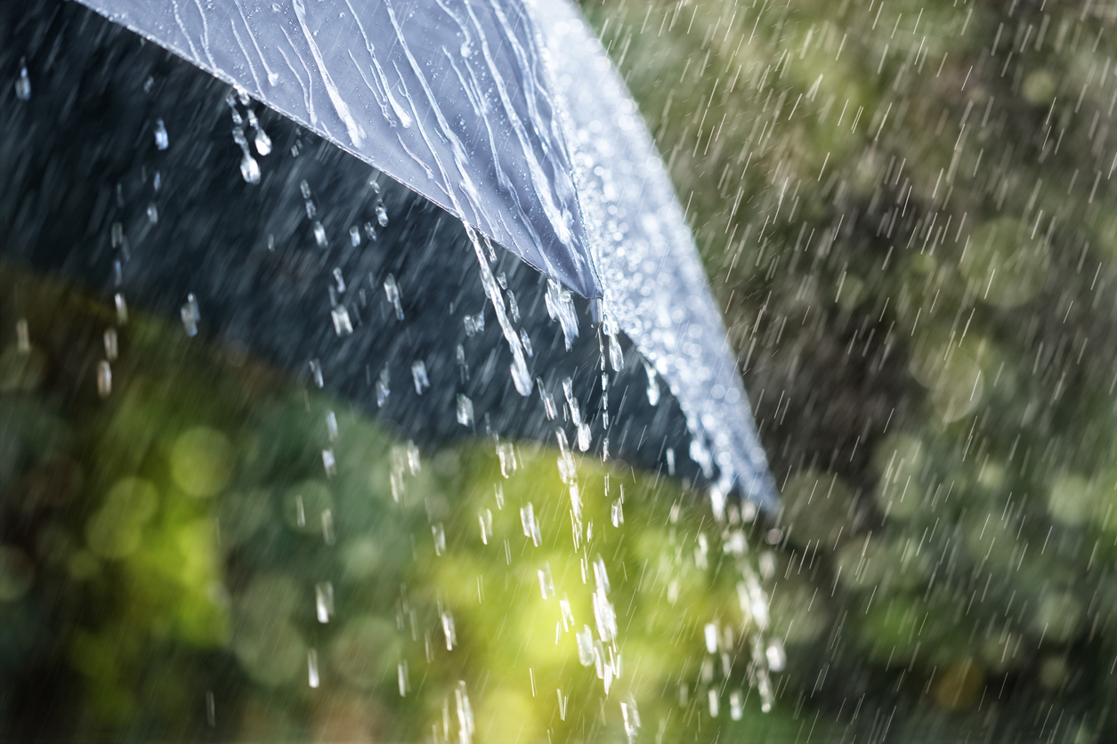Right as rain: How to interpret the daily rainfall forecast