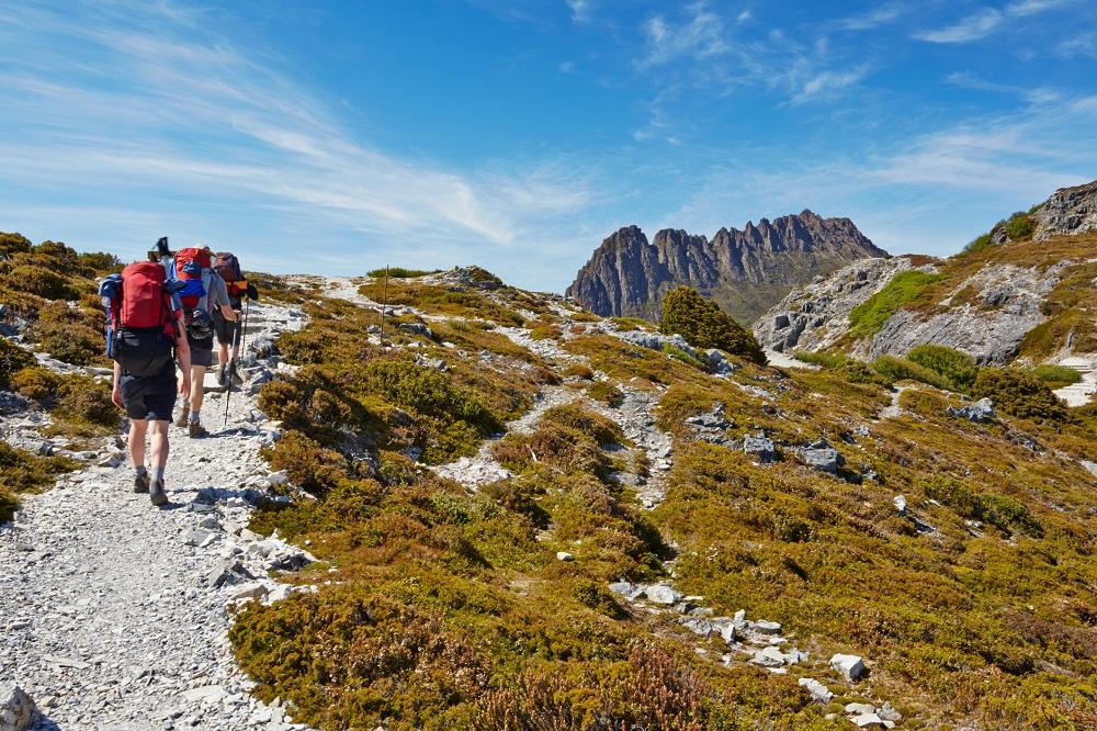 Bushwalkers on a track across an open hillside with low, green vegetation, heading towards a razorback mountain.