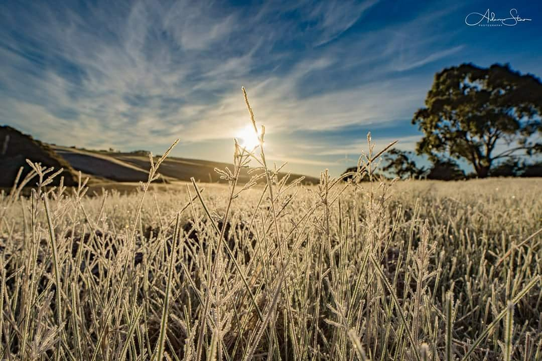 Image: Frost at Pykes Creek Reservoir, 1 July 2017. Credit: Adam Stan Photography