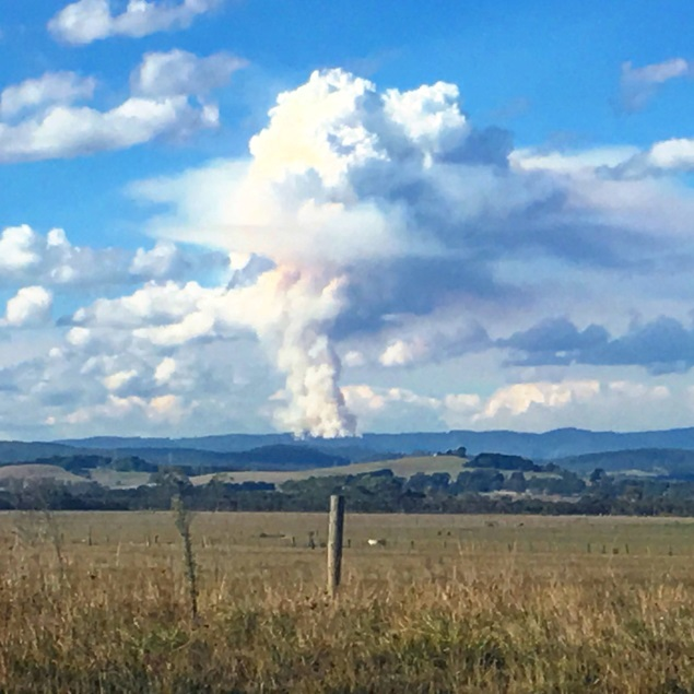 Image: Pyrocumulus cloud over Pakenham, Victoria, 22 March 2016 by Tadd Alexander
