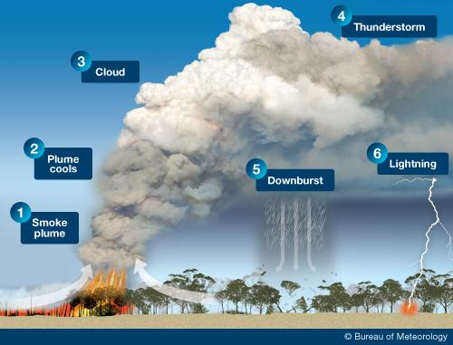 Diagram showing pyrocumulonimbus cloud development, with the steps detailed below