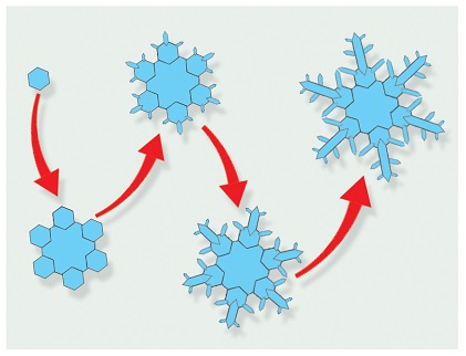 The development of a snowflake