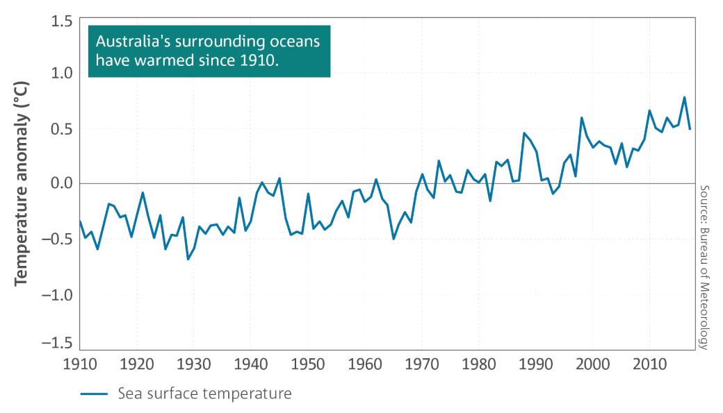 Graph showing sea surface temperature rising since 1910.
