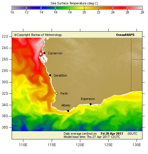 Image: Forecast sea surface temperatures and currents